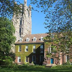 King's School Ely -частная школа пансион в Англии | Великобритании