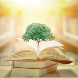 Мотивация и образование за рубежом